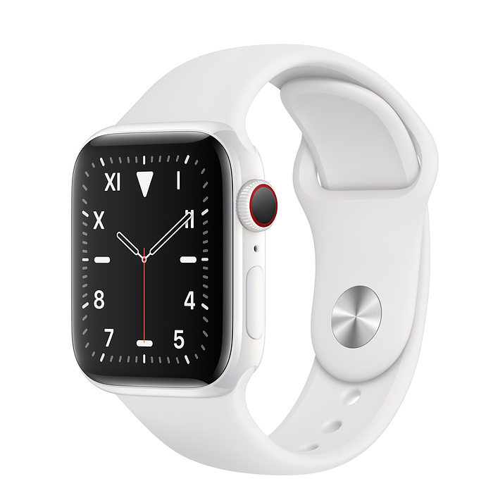 Apple Watch Series 5 Ceramic 40mm Sport Band