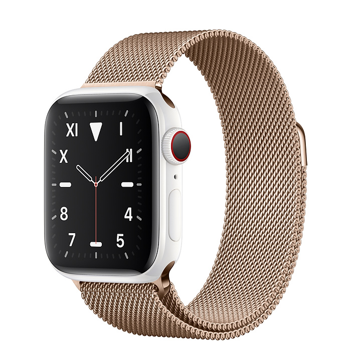 Apple Watch 5 Ceramic 40mm With Gold Milanese Loop