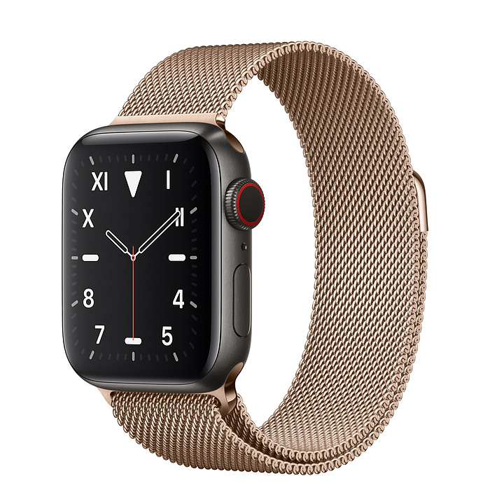 Apple Watch 5 Space Black Titanium Case 40mm with Gold Milanese Loop
