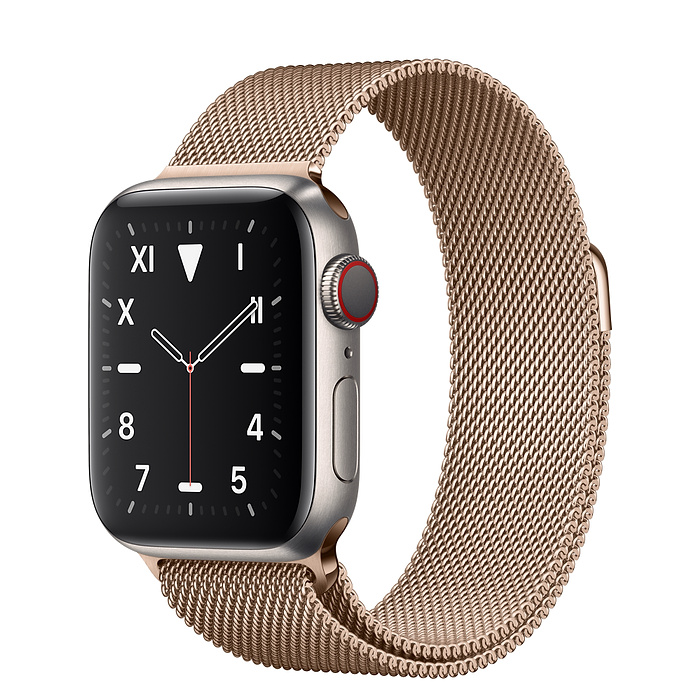 Apple Watch 5 Titanium Case 40mm with Gold Milanese Loop