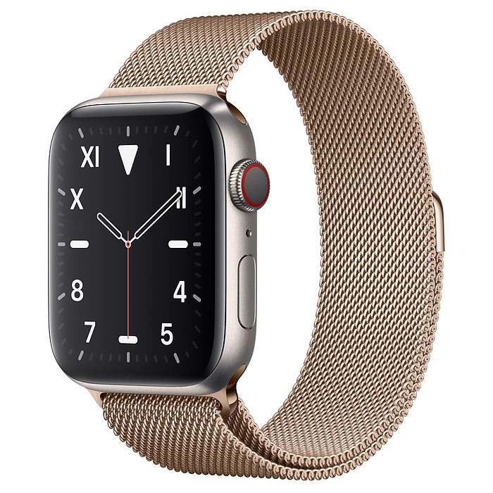 Apple Watch 5 Titanium Case 44mm with Gold Milanese Loop