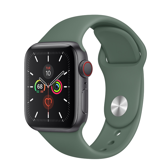 Apple Watch Series 5 LTE 40MM Gray / Pin Green