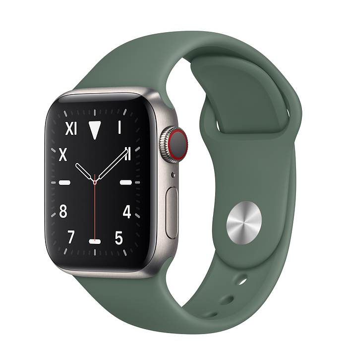 Apple Watch 5 Titanium Case 40mm with Pine Green Sport Band