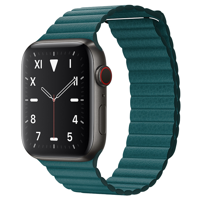 Apple Watch 5 Space Black Titanium Case 44mm with Peacock Leather Loop
