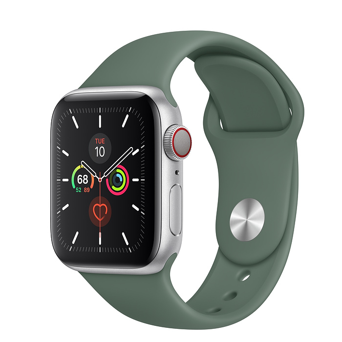 Apple Watch Series 5 LTE 40MM Gray / Pin Green